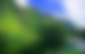 Envois colis Açores économique