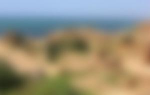 Envois Express Algérie