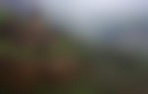 Envois colis en Arménie économique