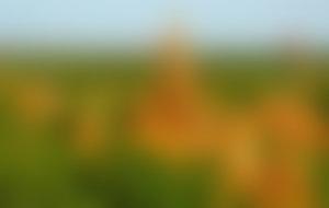 Envois colis en Birmanie économique