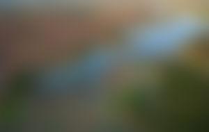 Envois colis économique au Botswana