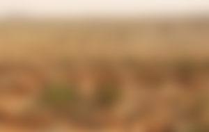 Envois Express au Burkina-Faso