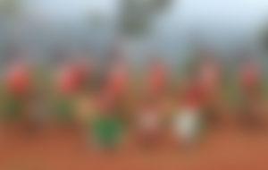 Envois Express au Burundi