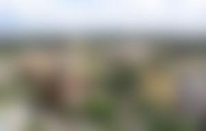Envois colis économique au Cameroun
