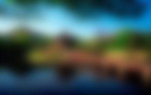 Envois Express en Corée du Sud