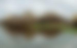 Envois colis économique au Ghana