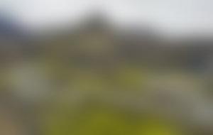Envois colis Islande économique