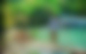 Envois colis Jamaïque économique