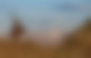 Envois colis en Mongolie économique