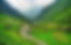 Envois Express au Pakistan