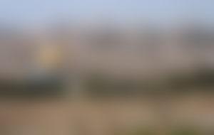 Envois colis économique en Palestine