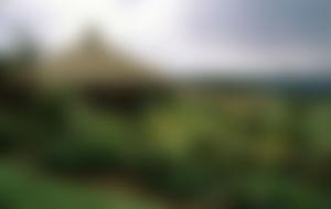 Envois Express Papouasie-Nouvelle-Guinée