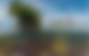 Envois colis Papouasie-Nouvelle-Guinée économique