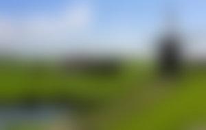 Colis Pays-Bas pas cher