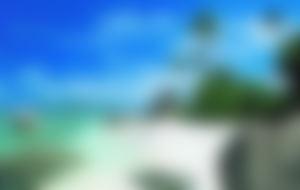 Envois Express aux Seychelles