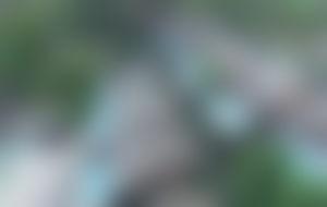Envois colis économique aux Seychelles
