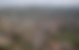 Envois colis économique en Sierra Leone