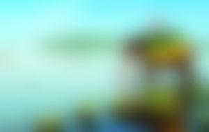 Envois colis économique au Sri Lanka