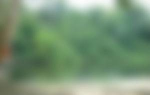 Envois Express Suriname