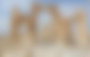 Envois colis économique en Syrie