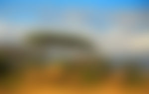 Envois colis économique en Tanzanie