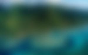 Envois colis Tonga  économique