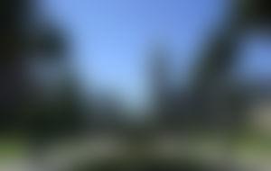 Envois colis Uruguay économique