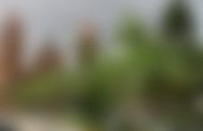 Envois Express en Bolivie