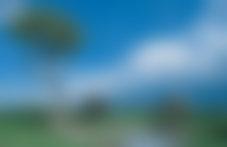 Envois colis économique Botswana