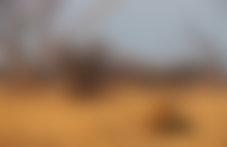Envois Express Botswana