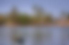 Envois colis économique en Gambie