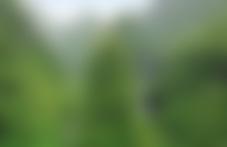 La Réunion est accessible aux colis par avion
