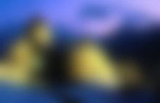 Envois Express Liechtenstein