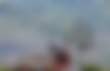 Colis Medellín international pas cher