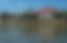 Colis Paramaribo international pas cher