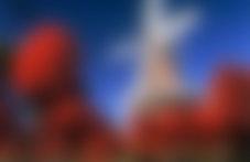 Envoi colis valises Pays-Bas