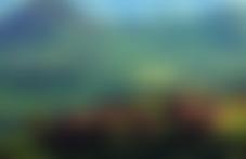 Envois colis économique Rwanda