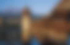 Envois colis Suisse Express