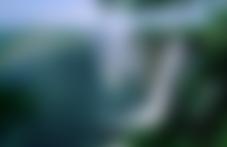 Envois colis économique Zimbabwe